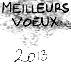 voeux immobiliers 2013